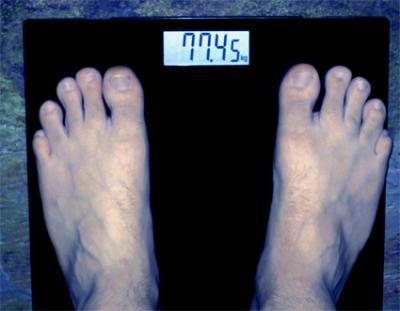 20081205201824-ivan-pies.jpg