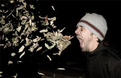 20060331000229-estornudo.jpg