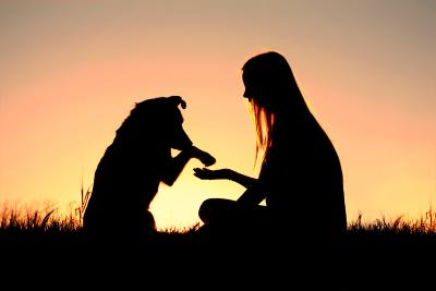 20180502202229-amor-perro-hombre-1474530756.jpg